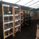 Colecțiile de INSECTE și PLANTE, deja au nevoie de spațiu suplimentar și un nou sistem de expunere.