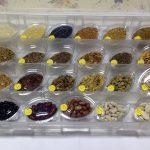 SEMINȚE: colecție cu peste 40 de specii (suficient de diferite pentru a deveni interesante în colaje)