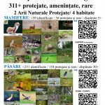 PoliPlanGard=85x100=Biodiversitate=4200+ Specii=+ArthaPark=02a_CT 25%